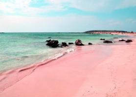 شنهای صورتی ساحل در باهاما