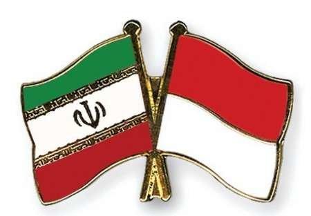 برگزاری سومین دور گفتگوهای حقوق بشر ایران و اندونزی
