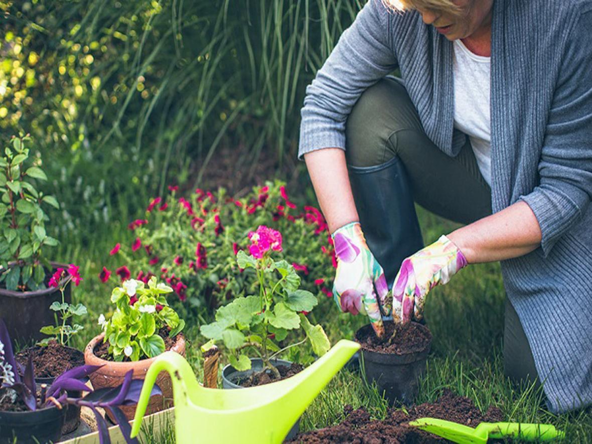 بهبود کیفیت زندگی سالمندان با یک روش ساده