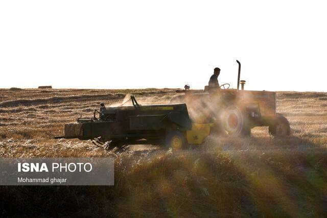 کرمانشاه؛ از قطب های کشاورزی کشور