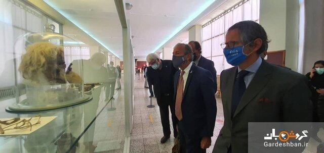 بازدید مدیرکل آژانس انرژی اتمی از موزه ملی ایران، عکس